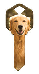 HK61 - Golden Retriever house, happy, key, keys, golden, retriever, dog, dogs, puppy, kw1, kw10, sc1, wr5